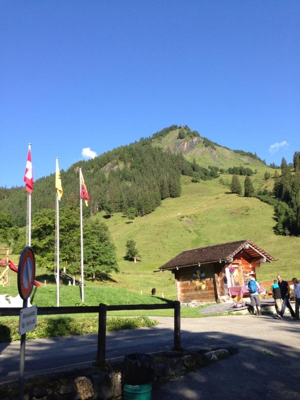 Meiringen to Grindelwald