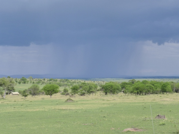 The squall eventually overtook us - with 40 to 50 mph winds.